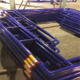 Walking Frame Scaffold