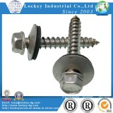 Stainless Steel 304 Hex Head Self Drilling Tapping Screw with Boned Washer