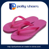 Hot-Selling Summer Hawaii Slippers for Women