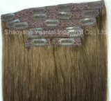 Silky Straight High Contrast Neutral Ombre Clip in Human Hair Extension