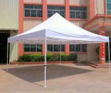 Easy to Fixing Foldable Tent at Factory Price