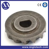 Customized Powder Metallurgy Gear (GE-100006)
