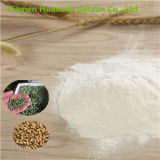 Hot Sale Industrial Collagen, Protein for Animal Feed