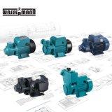 Home Use Electric Peripheral Vortex Qb60 Pressure Boosting Domestic Water Pump