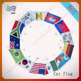 Custom Cheap Polyester Car Window Flag for Advertising (HY1124)