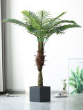 Wholesale 160cm Artificial Palm Tree Indoor Decoratiove Evergreen Artificial Plant Tree