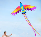 New Outdoor Sport Toy Best Selling 3D/Soft/Bird/Animal/Engle/Octopus/Phoenix Kite with Flying Thread