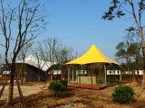 Economic Canopy Tent with Colorful Roof