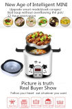 110V, USA, Japan, Canada, 200W 1.2L Mini Intelligent Rice Cooker with Reservation