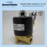 100% Tested High Quality Two Way Type Solenoid Valve