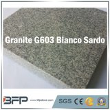 Polished/Flamed Floor Tile Stair Grey Granite Stone for Projects