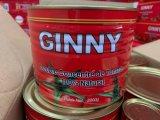 Tomato Paste Wholesaler Different Sizes Ginny Brand Tomato Paste