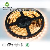 Wholesale Price SMD 2835 120LED LED Strip with DC12V 24V Warm Pure Nature White Color