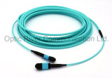 12f 3.6mm Round Cable MPO-MPO Patchcord Jumper Optical Fiber Connector Sm mm