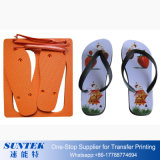 Sublimation Printing Purple Blank Flip Flops Beach Slippers
