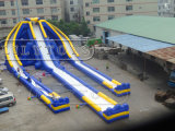 Inflatable Hippo Slide Inflatable Large Slide for Sale