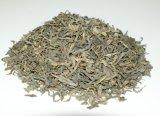 Anti-Oxidant Green Tea Op Green Tea 9371, 9369