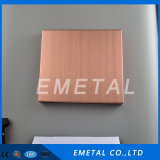 Color Sheet Hairline Stainless Steel Sheet 4*8 for Decoration