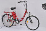 250W Steel Frame Strong Hot Sale Cheap Electric Bicycle