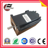 DC Electrical Step Motor for Electronic Equipment