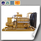 CHP Biomass Generator Set 300kw Best Price
