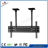 Best Selling LCD TV Bracket and Plasma TV Wall Mount