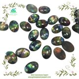 MGO Global Gems Trillion Shape Cut Smooth Colourful Cabochon Synthetic Ammolite Stone at Wholesale Price