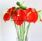 Tropical Plant Real Touch PU Single Artificial Anthurium Flower