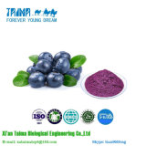 100% Natural High Quality Freeze-Dried Blueberry Powder with Good Taste
