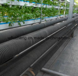 Hot Dipped Galvanized Gi Fin Tube for Vegetable and Flower Shed, Galvanised Fin Pipe Used for Heating Water