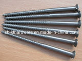 Flat Head Woodscrew
