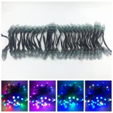 Colourful Addreable 12VDC LED Christmas String Lights and Christmas Chain