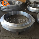 ANSI/DIN Forged Carbon/Stainless Steel Wn/Blind/So/Flat Flanges