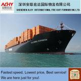 LCL Cargo Shipping Service Valencia Carrier Kline (Customs broker / Shipment)