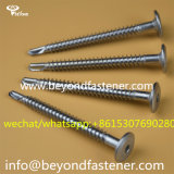 Twist Point Screw/Self Drilling Screw/Bi-Metal Screw/Tek Screw