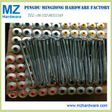 Spiral Thread Nail/Roofing Thread Nails/Roofing Nail with Washer