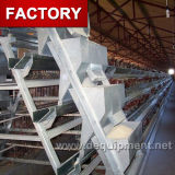 Automatic Feeding System for a or H Type Chicken Cage