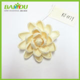 Most Popular in USA Soft Wood Flower