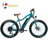 Wholesale Hotsale Elecrtric Fat Ebike with Powerful Motor