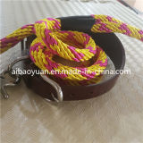 Gold Colour Nylon Yarms Braided and Leather Combinate Belt