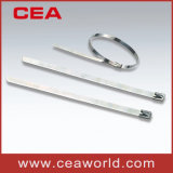 Stainless Steel Cable Ties (ss PVC coated cable tie)