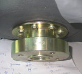 Water Storage Piping Fitting Flange for European Market Galvanized