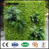 Wholesale Decorative Artificial Green Wall Plantings with SGS Certificate