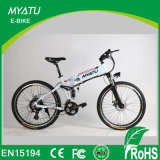28 Inch Mountain E Bicycle with Sw-900 LCD Display
