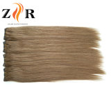 Light Color Double Drawn European Hair Human Hair Weft