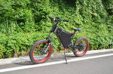 Max Speed 80km/H 3000W Electric Bicycle Made in China