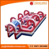 2018 Funny Inflatable Sport Game / Inflatable Maze (T9-301)