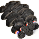 Body Wave Filipino Virgin Human Hair Extension Lbh 160
