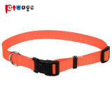 High-Quality Supply Polyester Dog Collar Nylon Pet Products