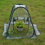 Pop up Indoor Grow Plant Tent